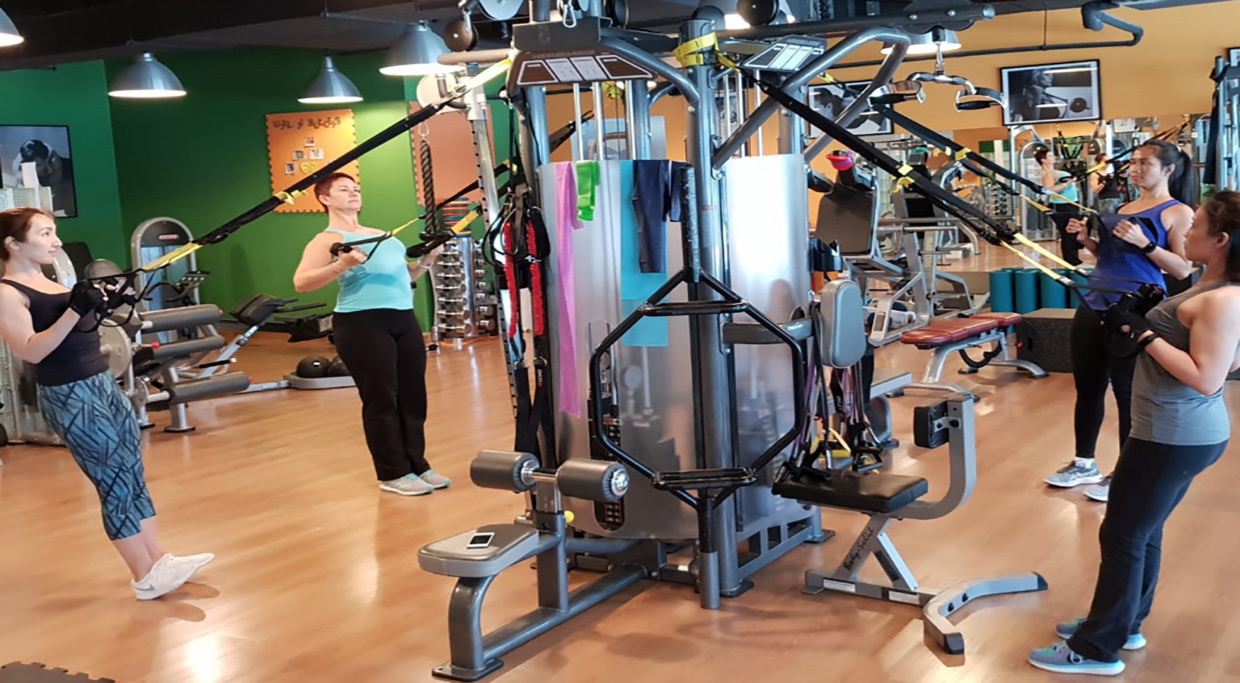 8ebb192093 1 Ladies Only Personal Training Gym Since 2009. In Shape Ladies Fitness Club  ...